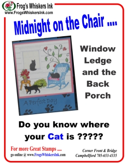 """Cat"""" Days of Summer 
